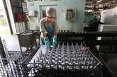 COVID-19 : 16 millions de travailleurs bénéficient du plan dassistancenbsp