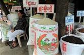 Les exportations de riz devraient atteindre 800.000 tonnes en 2020