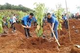 Lancement d'activités en écho au mois d'action pour l'environnement