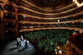 À Barcelone, après le confinement, les plantes vont à l'opéra
