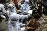 La pandémie