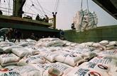 Exportations nationales de riz en hausse
