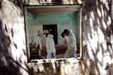 Brésil : le bilan passe à 685.427 cas du coronavirus dont 37.312 décès