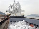 Le Vietnam pourrait devenir le premier exportateur mondial de riz