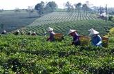 L'exonération d'impôt sur les terrains agricoles repoussée jusqu'à fin 2025