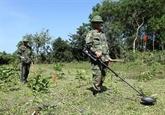 Soutien des ONG américaines dans le déminage à Quang Tri
