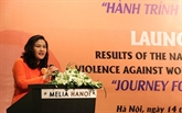 Rapport sur l'enquête nationale sur les violences à l'encontre des femmes vietnamiennes 2019