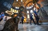 Sainte-Sophie ouverte aux visiteurs en dehors des heures de prières musulmanes
