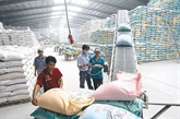 L'UE publie les contingents tarifaires pour les produits agricoles vietnamiens