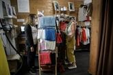 Secouée par le COVID-19, la filière lin rêve d'une relocalisation en France