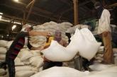 Après-COVID-19 : Le Cambodge exportera un million de tonnes de riz