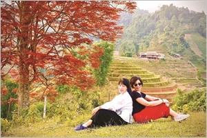 Le May Coong larbre qui rythme les récoltes