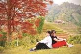 Le May Coong, l'arbre qui rythme les récoltes
