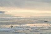 Record absolu de chaleur dans le Svalbard norvégien