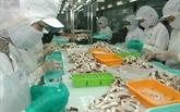 Les exportations de calmars et de poulpes augmentent légèrement en juin