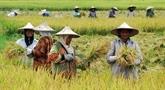L'Indonésie et la Turquie ont convenu de porter le commerce agricole à 10 milliards d'USD