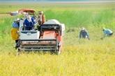 Agriculture : lindien TATA explore les opportunités à Cân Tho