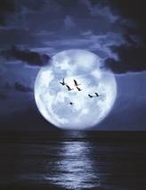 Sel de lune
