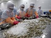 Les crevettes vietnamiennes sont prisées aux États-Unis