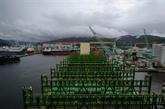 En Corée du Sud naissent des porte-conteneurs géants