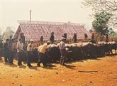 Les ethnies minoritaires des hauts plateaux du Centre