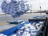 Le riz exporté vietnamien est désormais plus cher que celui de la Thaïlande