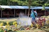 L'épidémie à Dà Nang et Quang Nam sera sous contrôle fin août
