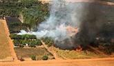 Amazonie brésilienne : très forte augmentation des incendies