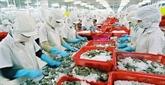 Le commerce entre le Vietnam et l'Inde devrait atteindre 15-20 milliards de dollars