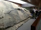 Un fossile de reptile découvert dans l'estomac... d'un plus grand fossile de reptile