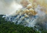 Brésil : les incendies
