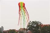À Ba Duong Nôi, le cerf-volant est toujours dans le vent