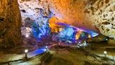 De célèbres grottes de la baie de Ha Long