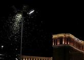 Une loi réduisant la pollution lumineuse pour sauver les insectes