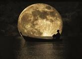 Ngẫm trăng