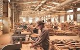 Retour en force des exportations de bois et de meubles