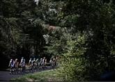Tour de France : chamaille aux Verts