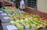 Saisie de plus de 230 kg de drogue cachés dans des statues en bois