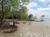 La sécheresse et l'intrusion d'eau salée causent de grosses pertes à Trà Vinh
