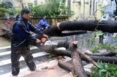 Tempête Noul : un mort, des dizaines de blessés