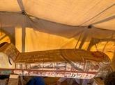 Quatorze nouveaux sarcophages découverts à Saqqara