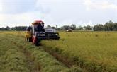 Kiên Giang vise à exporter de 780 millions d'USD de biens en 2020