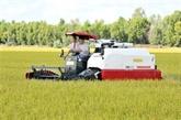 Une centaine de tonnes de riz exportée vers l'UE