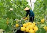 Promotion commerciale des produits agricoles en discussion