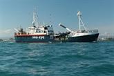 La France demande à l'Italie d'accueillir le navire humanitaire Alan Kurdi