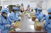 Vietnam et Pays-Bas cherchent à stimuler le commerce des fruits et légumes