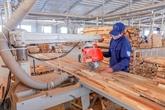 L'activité manufacturière vietnamienne pâtit du COVID-19