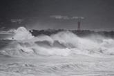 Un puissant typhon frappe le Japon avec des vents violents et de fortes pluies