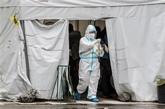 Les Philippines mobilisent plus 8,8 milliards d'USD pour lutter contre le coronavirus