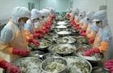 Les exportations de crevettes profitent des opportunités en 2021